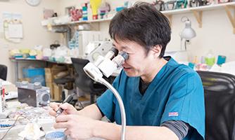 D-Net Dental Laboratory